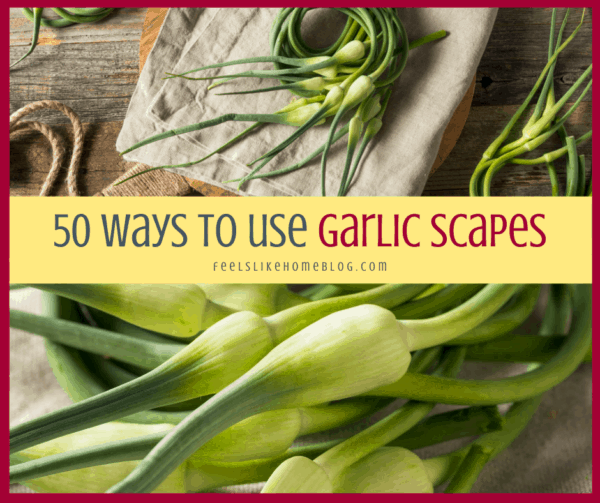 a collage of garlic scapes up close