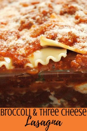 The best healthy vegetarian broccoli & three cheese lasagna recipe - Uses noodles and ricotta with tomato sauce.