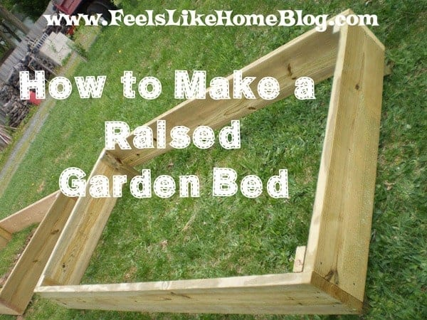 permaculturenews how to build a cheap raised garden