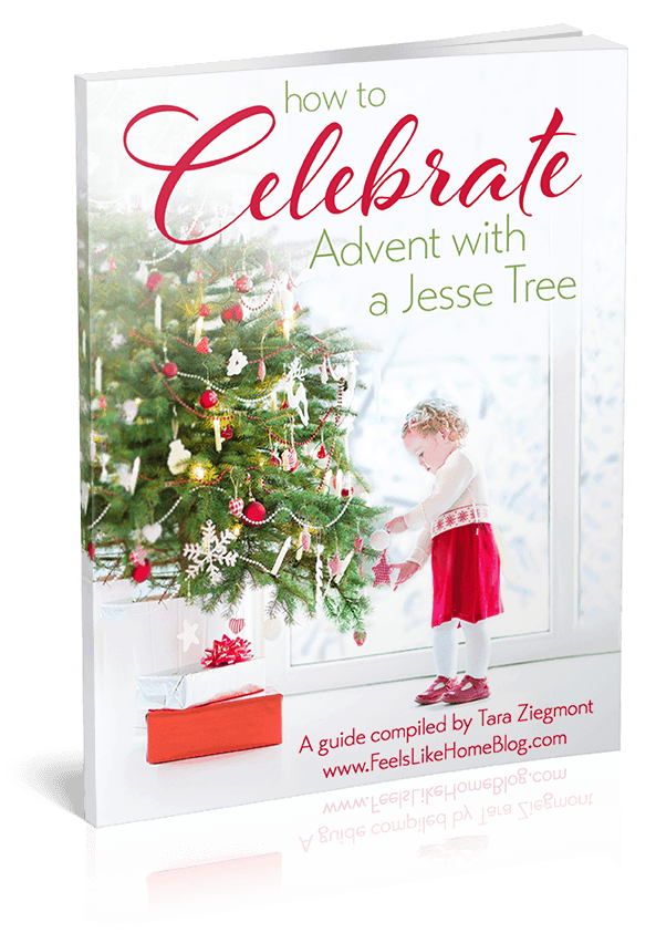 photograph about Printable Devotions for Tweens called How toward Rejoice Arrival with a Jesse Tree
