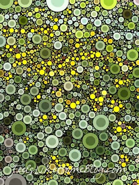 Best iPhone Camera apps - Percolator