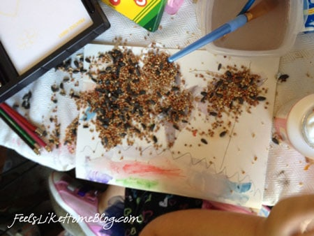 A close up of bird seed on the table