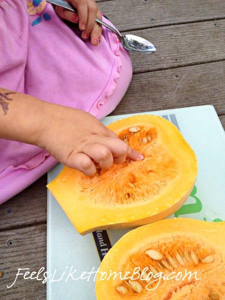 A little girl touching a cut pumpkin