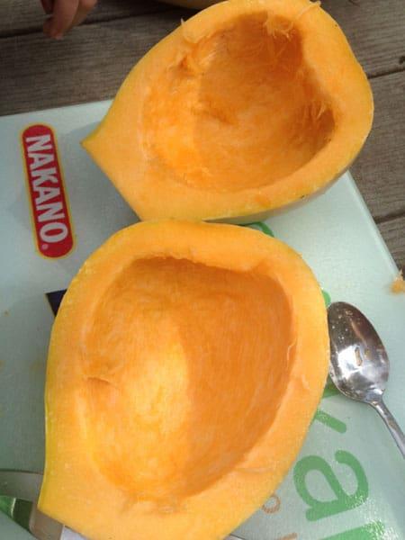 Two pumpkin halves
