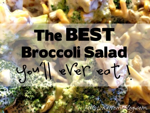 The best simple and easy broccoli salad recipe - This recipe is quick and healthy. Shredded cheddar cheese, golden raisins, walnuts, and bacon give it texture and crunch and make it so interesting. The dressing is creamy and low carb with mayonnaise and Greek yogurt.