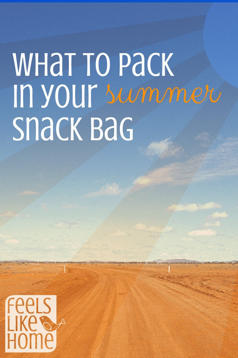 What to pack in your summer snack bag for healthy snacks for your kids when you're on the go. These simple, easy, and portable snacks and drinks are great for outdoors, whether you're at the beach, playground, or pool. Quick and refreshing, great for toddlers, preschoolers, older kids, and even for adults. Lots of protein. These are the best yummy, light ideas for cheap things to buy.