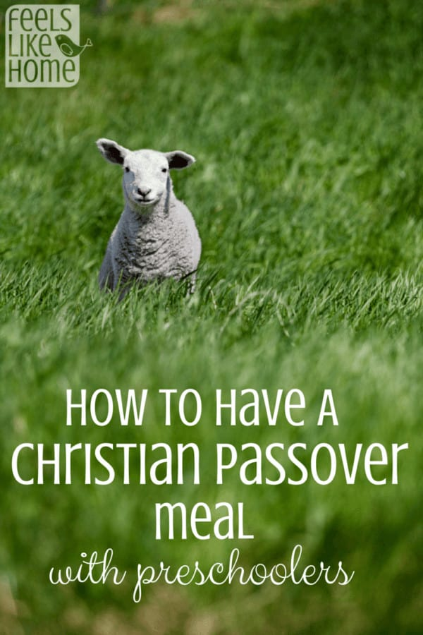 Lots of Christians honor the Passover with a special meal or seder. The parents read scripture while the kids help to remember all the special foods. Includes a script that families with or without children could use to commemorate The Last Supper together. These Easter activities are perfect for children to bring life and truth into their lives through faith in the Lord. Includes scriptures.
