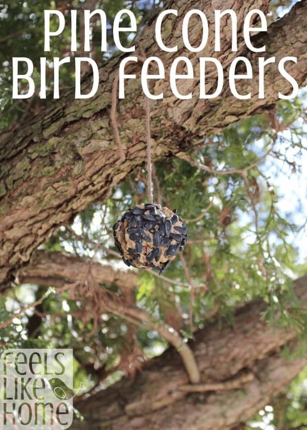 DIY pine cone bird feeder craft - easy crafts for kids - This quick and easy (and messy) bird seed craft for kids is great for toddlers and preschoolers but would also work for older elementary kids. How to make an easy DIY craft that is fun. Great ideas for projects and activities. Includes tutorial for pinecones to feed the birds and squirrels in summer or winter. Can also use dried fruit.