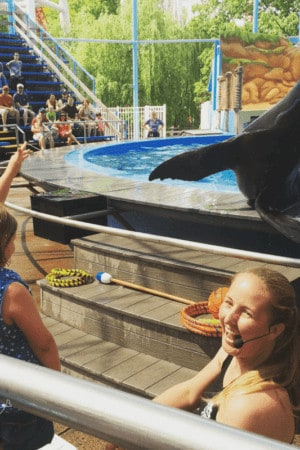 Grace and Diego the sea lion performing a trick together at Hersheypark.