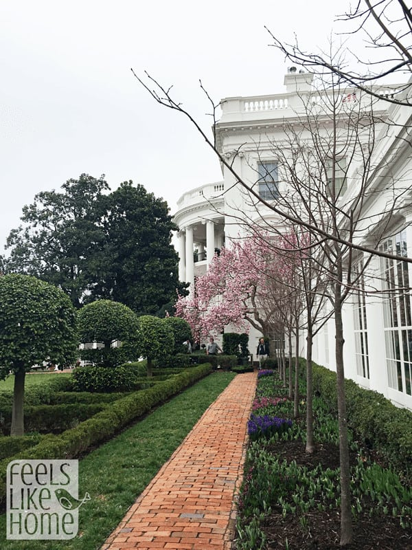 white-house-lets-move-event-with-first-lady-michelle-exterior