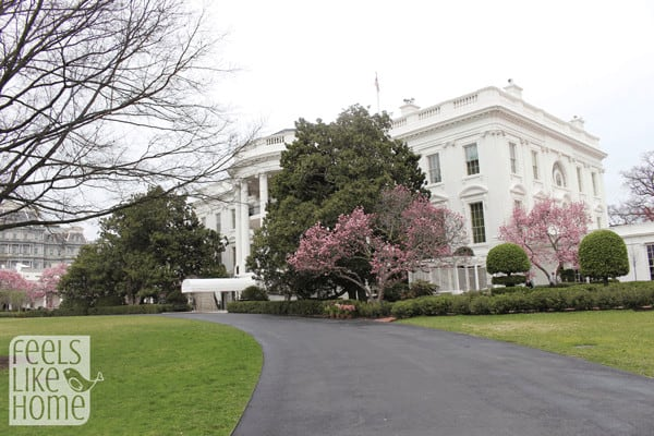 white-house-lets-move-event-with-first-lady-michelle-exterior2