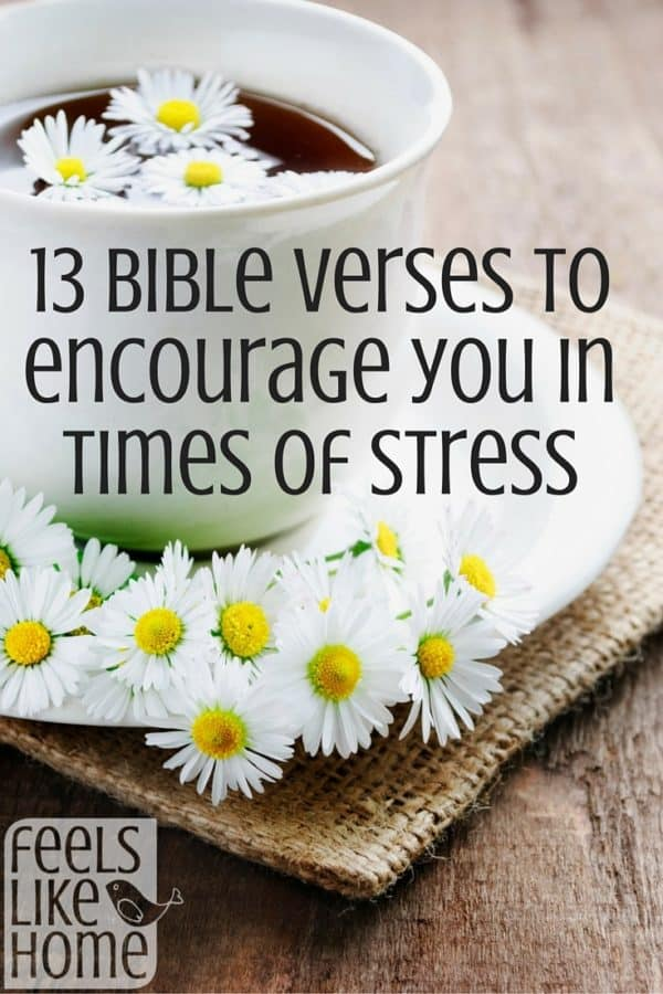 13 Bible verses about stress and anxiety. These scriptures are encouragement and inspiration to have strength, faith, and peace. In these truths and words, the Lord is encouraging and says, 'Remember this. Don't worry. You are beautiful. Jesus Christ will save you.'