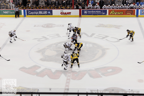 hershey-bears-at-giant-center