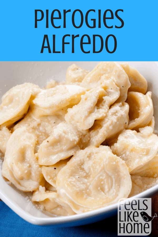 Pierogies alfredo with ham, broccoli, and tomatoes - This simple and easy recipe starts with a box of frozen pierogies and adds a jar of alfredo sauce with ham and veggies. They make a perfect side dish or main dish for a weeknight dinner.