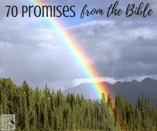 Standing on the Promises of God - 70 Biblical Promises You