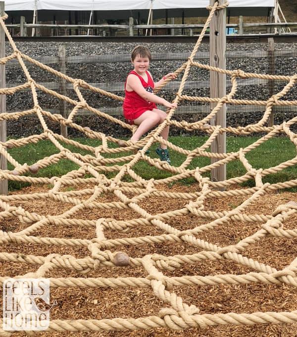 A child on the cobweb at Cherry Crest Adventure Farm