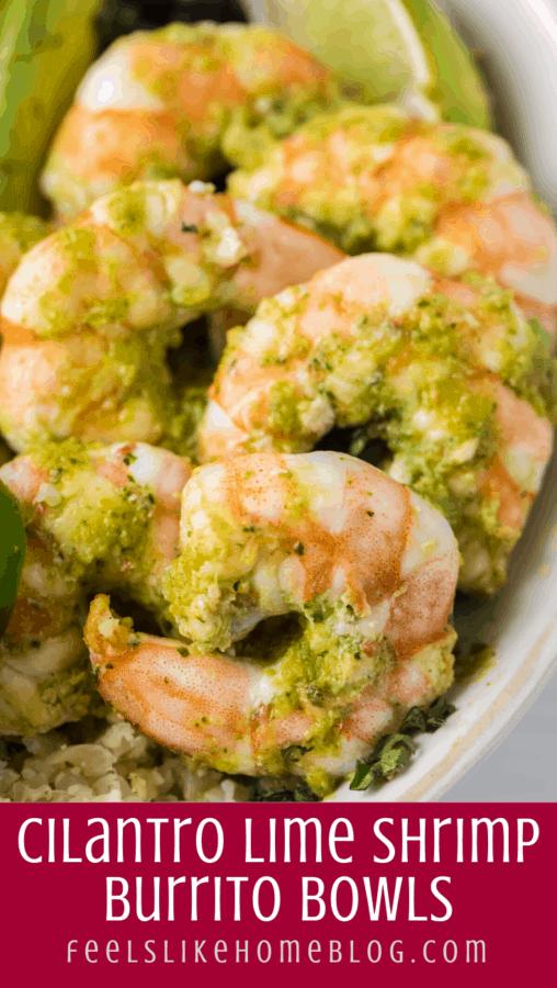 close up of cilantro lime shrimp