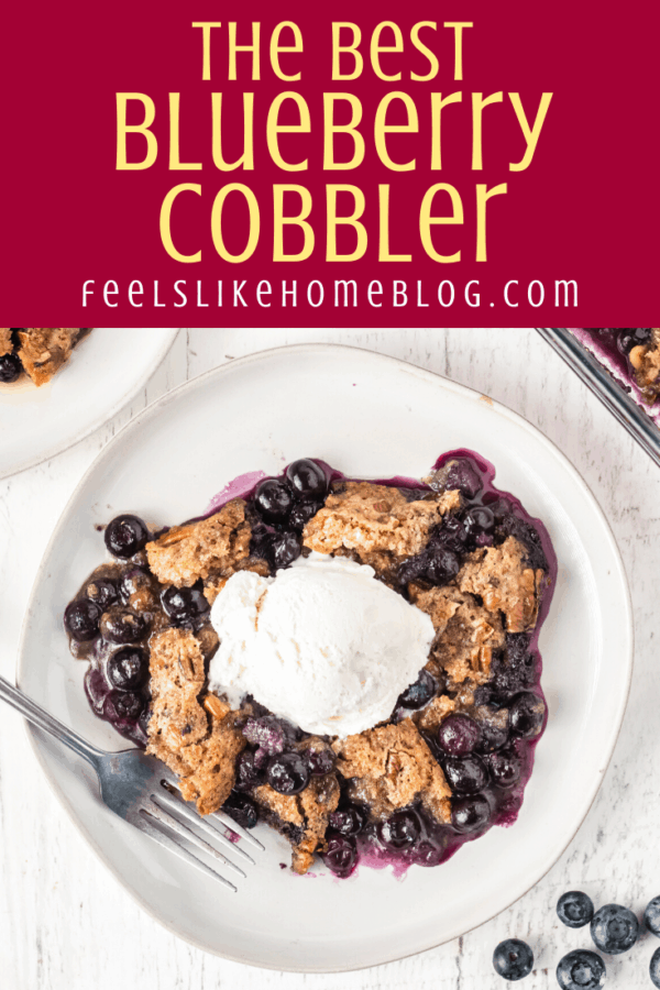 one slice of the best blueberry cobbler topped with ice cream